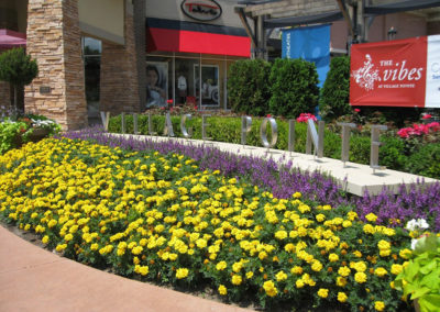 LanohaNurseries_Omaha_Nebraska_CommerciallLandscaping_Gallery_0005