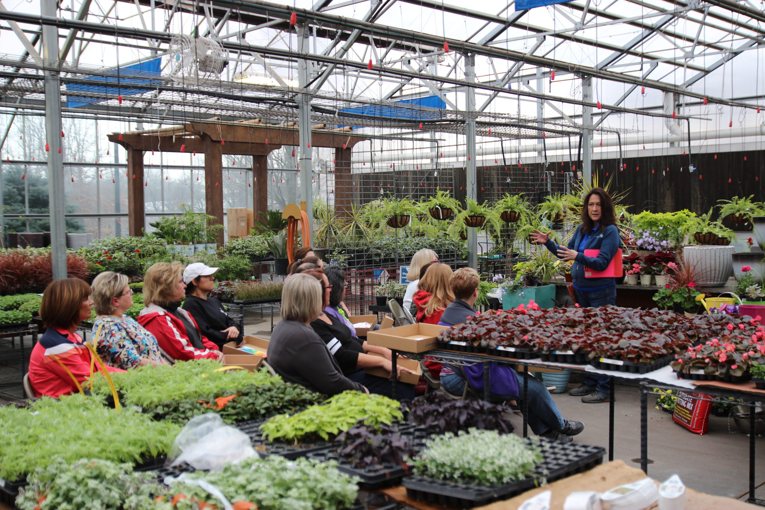 DIY Container Garden: A Hands-on Workshop